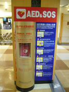 AED福岡空港4